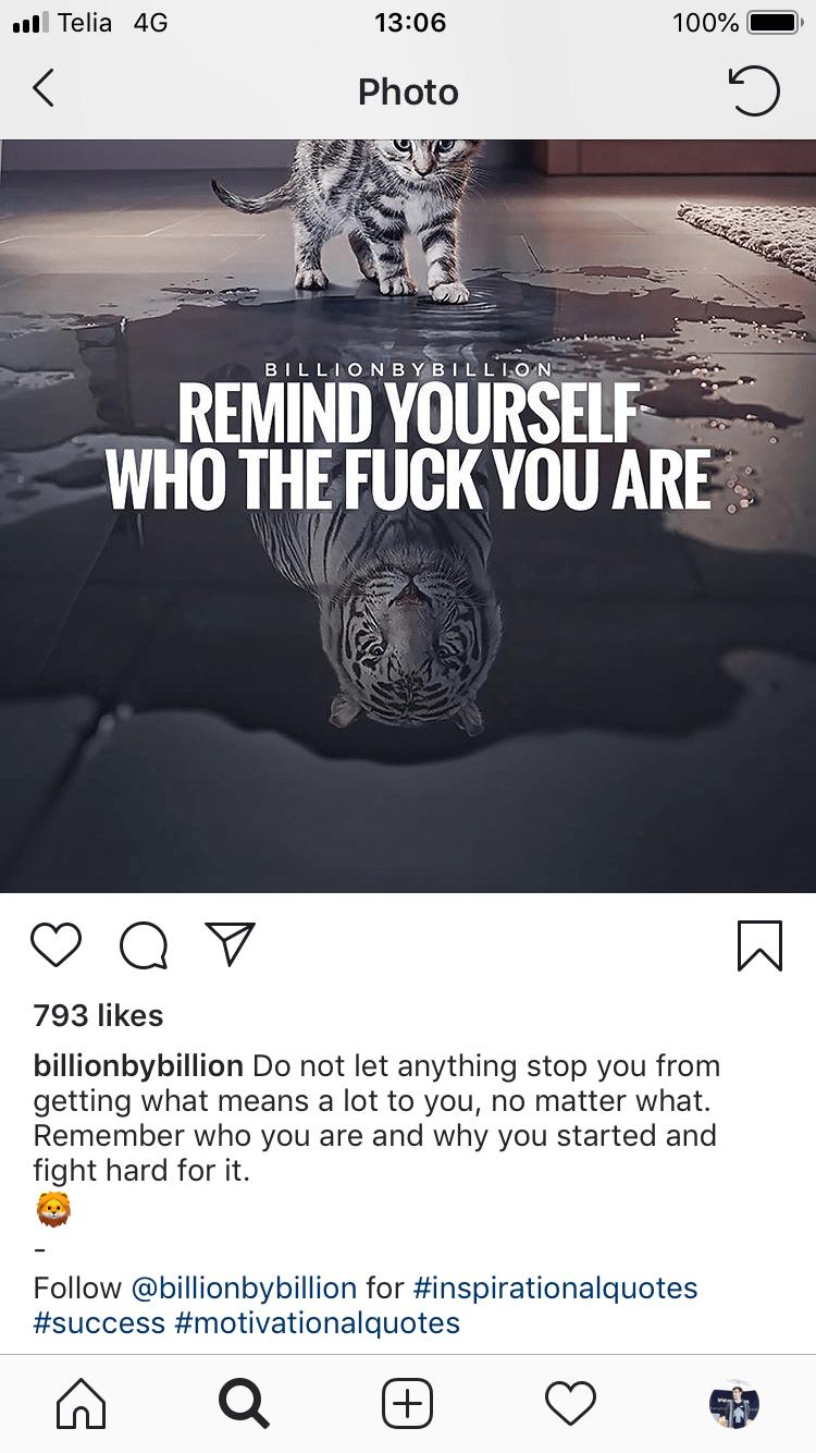 Instagrami turundus - järgijad